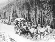 Black and white image of a four horse carriage